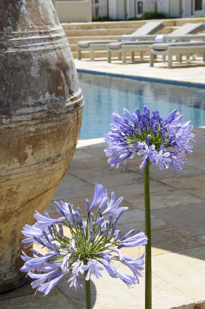 Corfu villa atolikos ivy villas 20