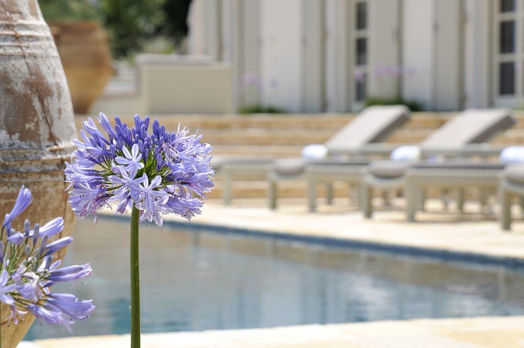 Corfu villa atolikos ivy villas 21